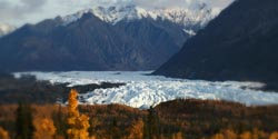 Guided tours in Alaska
