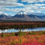 Alaska Adventure Unlimited - the Environmentally Aware Alaska Tour Company
