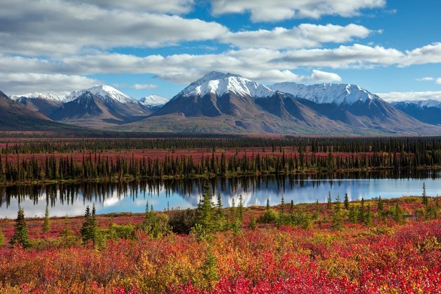 Alaska Adventure Unlimited - the Environmentally Aware Alaska Tour Company
